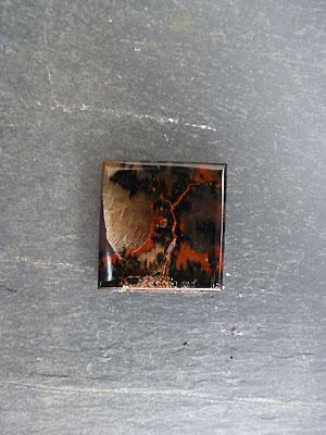 Petrified Wood - Designer Cabochon