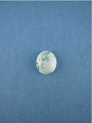 8x10mm Tree Agate Oval Cabochon