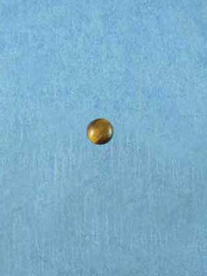 7mm Tiger Eye Round Cabochon