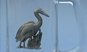 Blue Heron Beer Mug Lead Free Pewter
