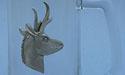Prong Horn Antelope Beer Mug - Lead Free Pewter