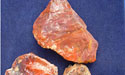 Petrified Wood - Arizona - Price per lb